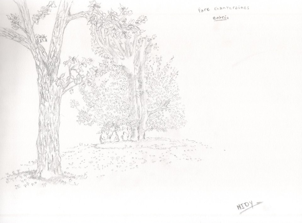 Parc des chanteraines drawing on paper