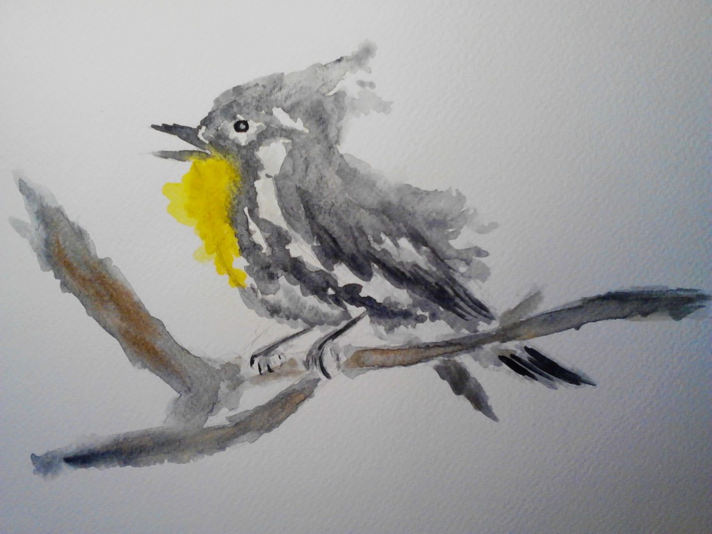Painting of a Yellow Throated Warbler, watercolor painting on watercolor paper