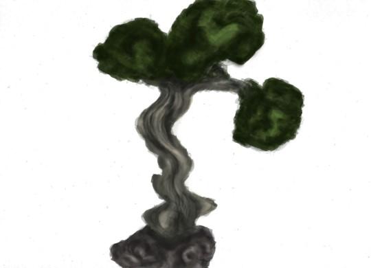 Bonsai Tree illustration on photoshop