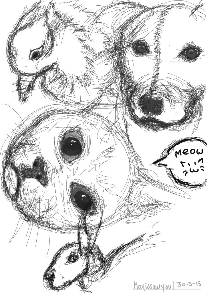 animal study #4 illustration on photoshop
