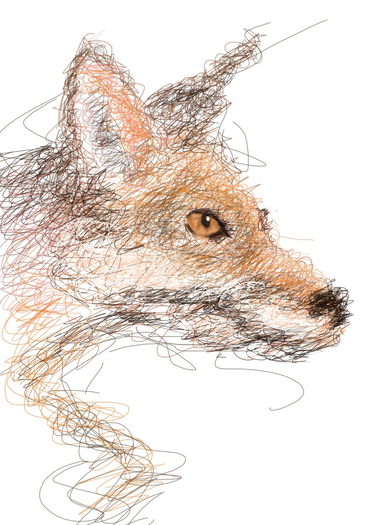 Linework - Fox illustration on photoshop