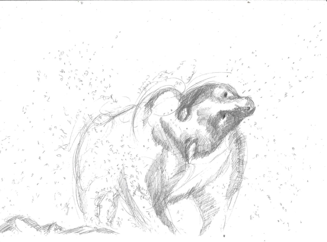bear splashing water drawing on A4 paper