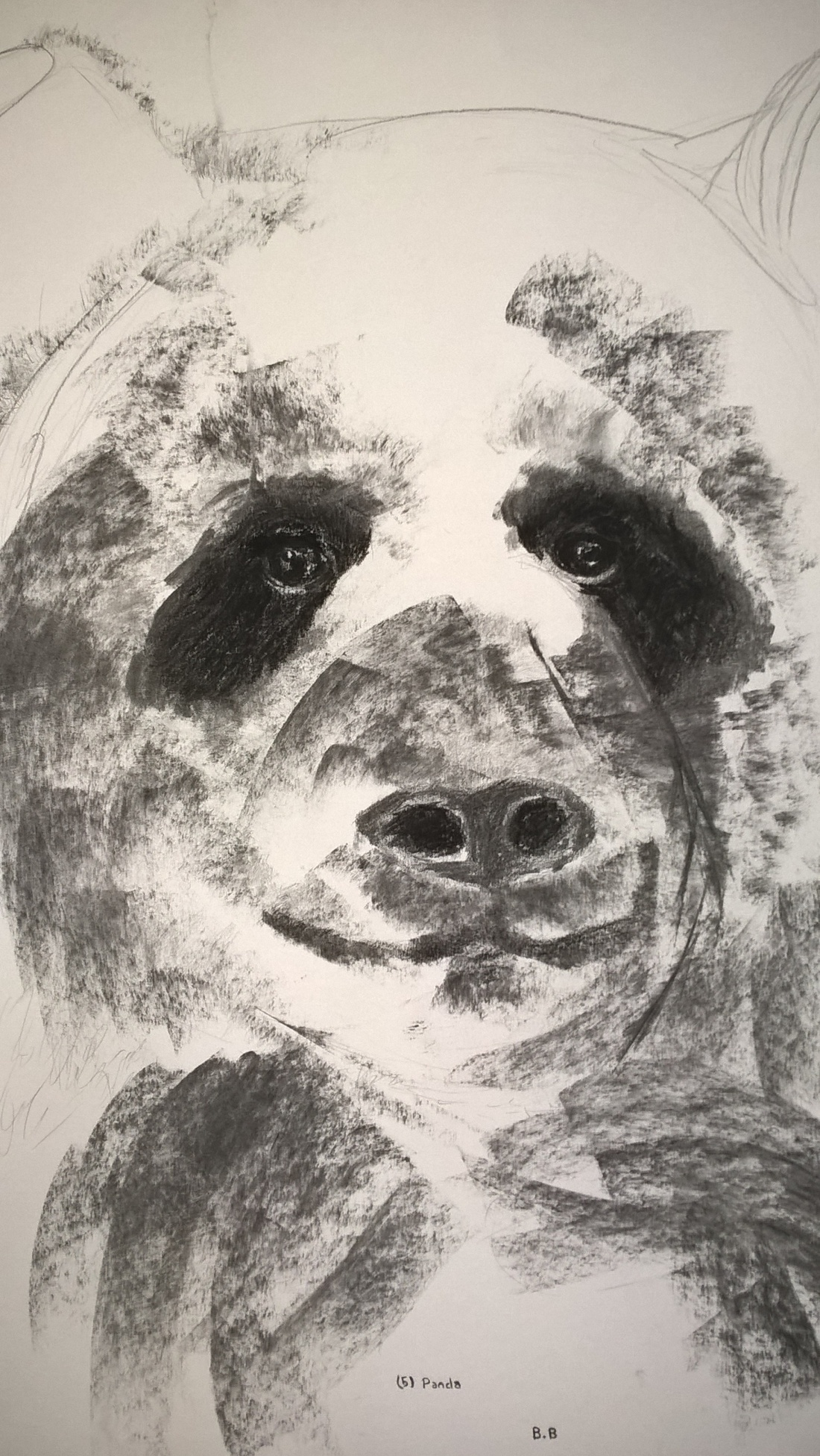 Unfinished - charcoal - Panda